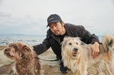 七尾旅人『Stray Dogs』 別れを繰り返し、彷徨う野良犬たちを美しく肯定する歌