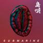 SUBMARINE 『島唄』 □□□の三浦康嗣が全面プロデュース、MC&トラックメイカーのユニットによる8年ぶり新作