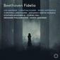マレク・ヤノフスキ(Marek Janowski)指揮『ベートーヴェン:歌劇「フィデリオ」』リーゼ・ダヴィドセンとクリスティアン・エルスナーの二枚看板で構築された〈レコード芸術〉