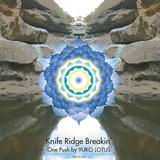 VARIOUS ARTISTS 『Knife Ridge Breakin' One Push by YUKO LOTUS』