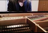 注目ピアノ・トリオTRISPACEの林祐市、自宅で撮影した繊細なソロ・ピアノ演奏の映像公開