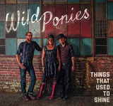 WILD PONIES 『Things That Used To Shine』