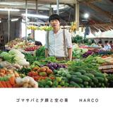 HARCO、5年ぶりフル作は堀込泰行&杉瀬陽子やあがた森魚ら参加の洒脱なアレンジで日常に寄り添うポップソング集