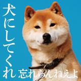 忘れらんねえよ新作はNARASAKIプロデュース、グランジ風味の暴走&胸キュン・メロディーにヘタレ歌詞がいっそう光る力作