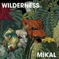 ミカエル 『Wilderness』 硬質な音とサイバーなエフェクトで激ドープ空間に彩られた、メタルヘッズ発の初作