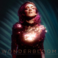ベッカ・スティーヴンス(Becca Stevens) 『Wonderbloom』エレクトリックな音像を強調、声の素晴らしさが際立つ