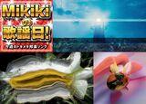 平沢進、Buffalo Daughter、ウ山あまね、みらん、茶封筒……Mikiki編集部員が選ぶ今週の邦楽5曲