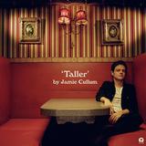 ジェイミー・カラム 『Taller』 ソウル寄りのナンバーが軸、活気取り戻したかのような歌&ピアノが好印象