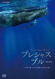 「プレシャス・ブルー カリブ海・クジラの親子と出会う旅」 ダイバーの二木あいがカリブ海のクジラに迫るドキュメンタリー